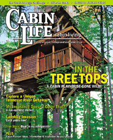 I Thought My Insurance Covered That Cabin Life Magazine