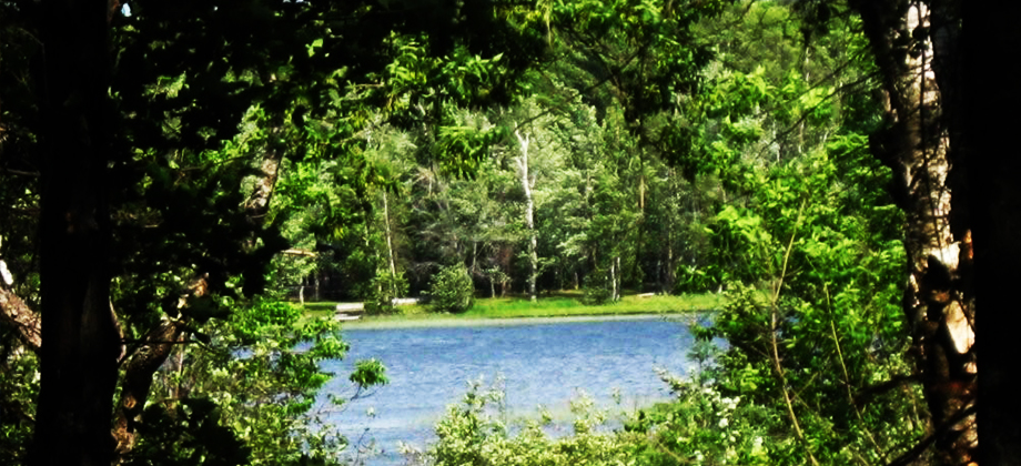 Minong Wisconsin Lake Property